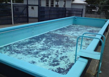 Birkdale Primary School Pool Before