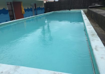 Green to clean pool after